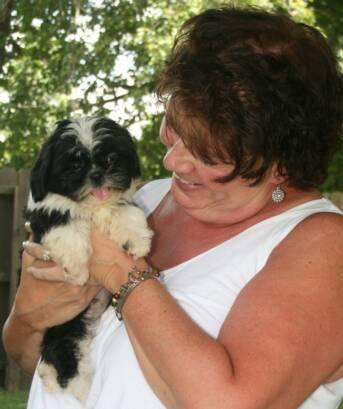 Nursery | Indiana Shih Tzu Puppies for Sale | IN AKC Shih Tzu